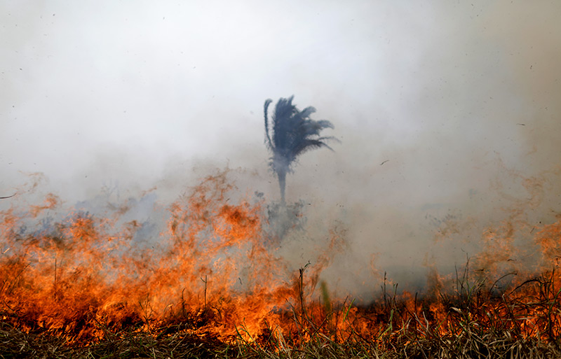 A tract of the Amazon jungle in Porto Velho, Brazil, burns as it is cleared by loggers and farmers Aug. 24, 2019. (CNS photo/Ueslei Marcelino, Reuters)